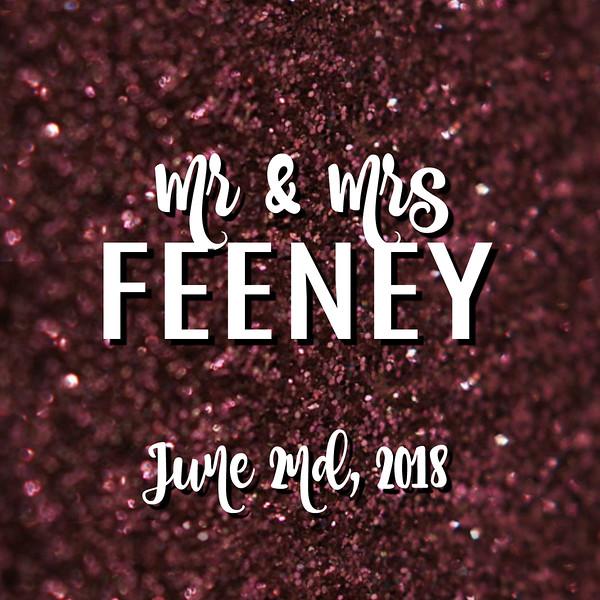 Feeney Wedding Photobooth | 2018