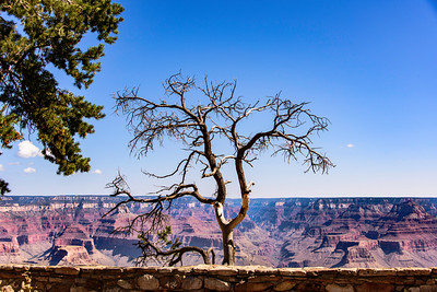 Grand Canyon Hike 9/11