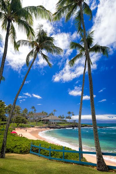 Maui Hawaii March 2016
