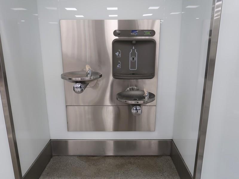 IMG_7075-drinking-water.jpg