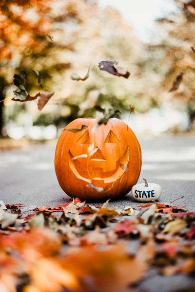 October 25, 2018 Halloween DSC_5707.jpg