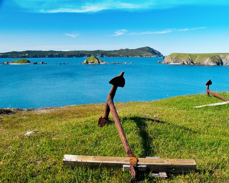 Newfoundland view