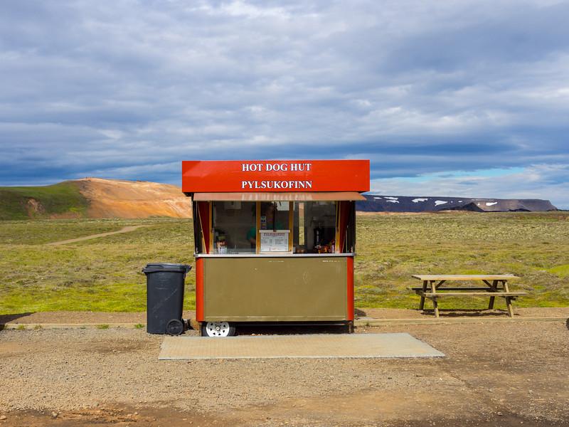 The ever-present Icelandic hotdog stand.