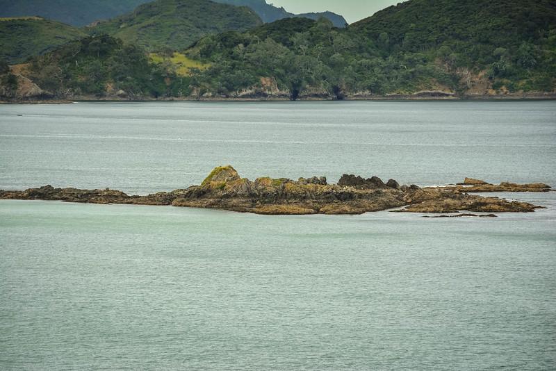 Bay-Of-Islands-49.jpg