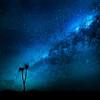 "15 - Trey Ratcliff - ""fibonacci"""