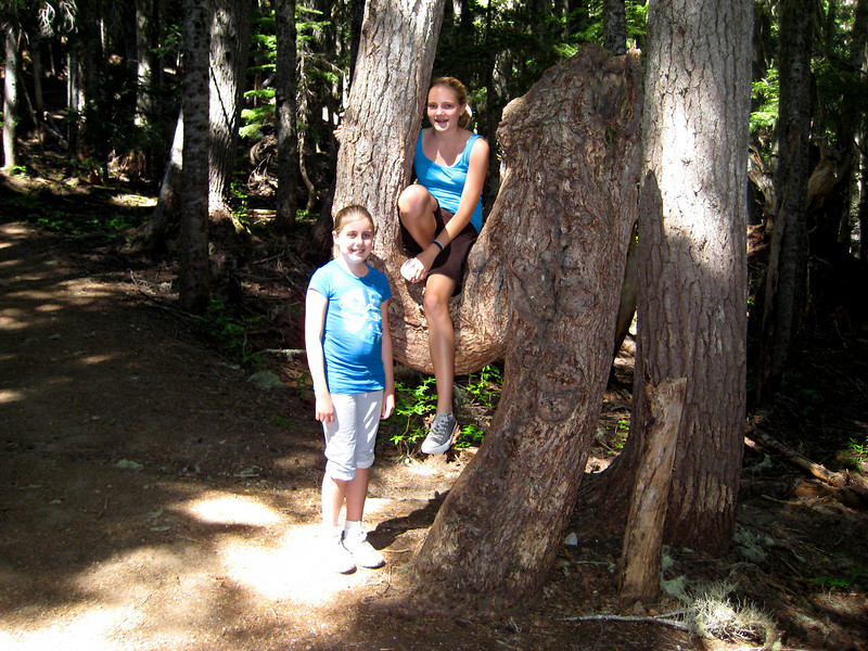 Emily and Elena at the Elephant Tree (trail to Summerland), 2008