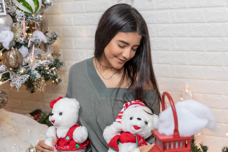 12.18.19 - Vanessa's Christmas Photo Session 2019 - 40.jpg
