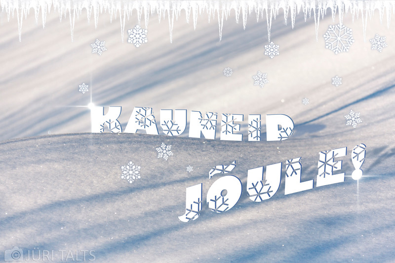 Jõulud 2013.jpg