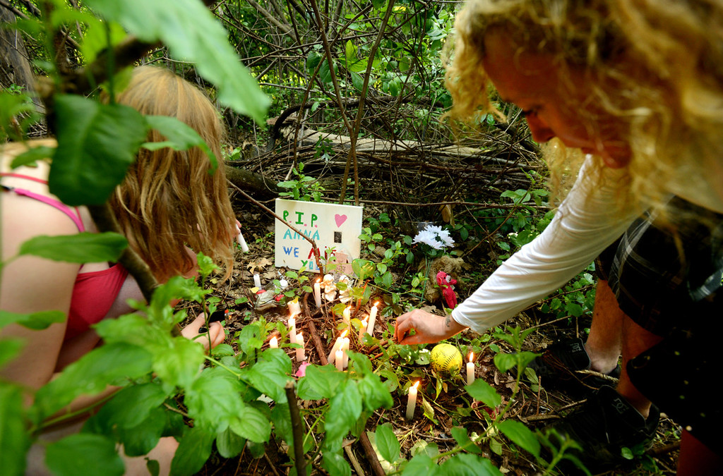 . At the conclusion of a candlelight vigil on Tuesday, Anna Hurd\'s mother, Jennifer Hutchings, right, clears some foliage surrounding the site at Hillside Park in Maplewood where her daughter Anna was murdered in February. (Pioneer Press: Chris Polydoroff)