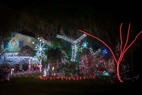 Christmas Lights, River, Kids, NPR FL 121314