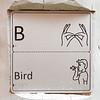 bird auslan and braille panel