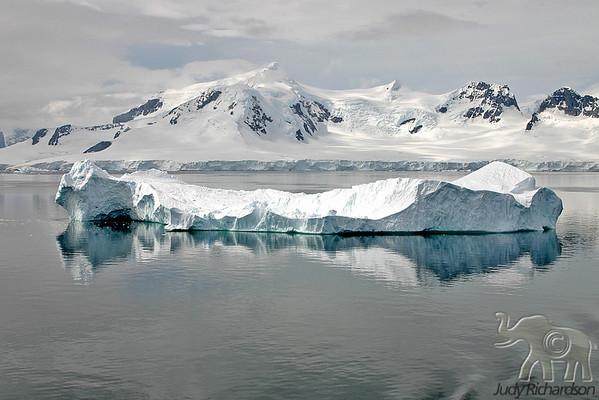 Antarctica - January 2, 2006