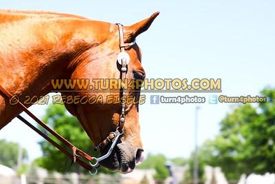 Western Equitation 29-31 06/20/21