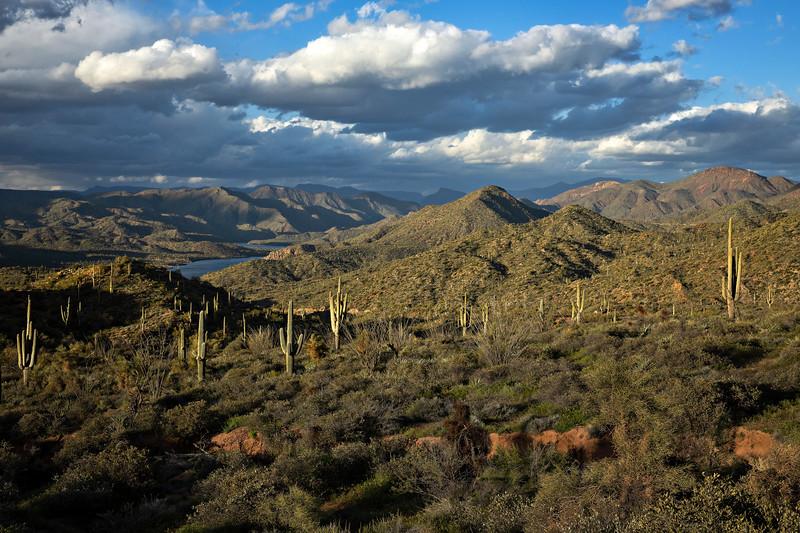 1723 Apache Lake