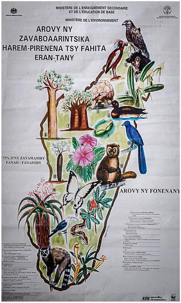 Madagascar - October 2016