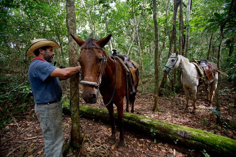 Martz Farm, Belize