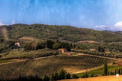 Europe-Italy-Chianti
