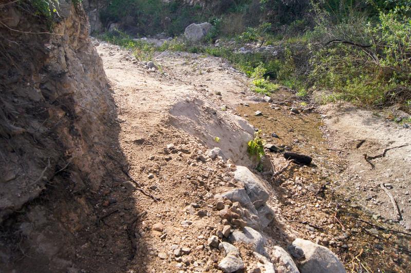 201201291676-El Prieto Trailwork.jpg