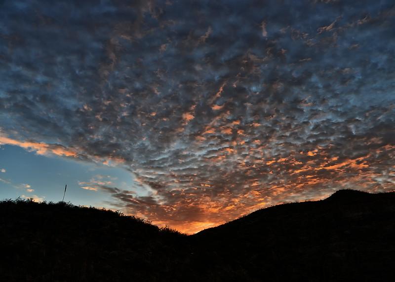NEA_0635-7x5-Sunrise.jpg