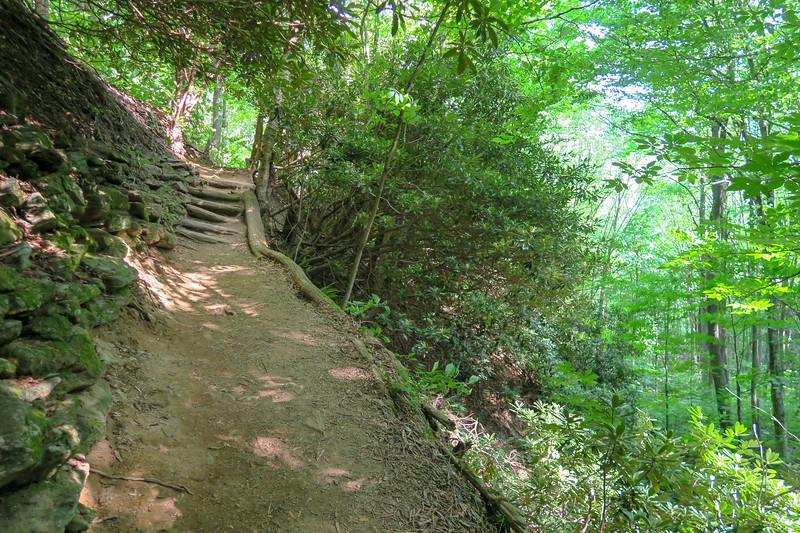 Mountains-to-Sea Trail -- 4,400'