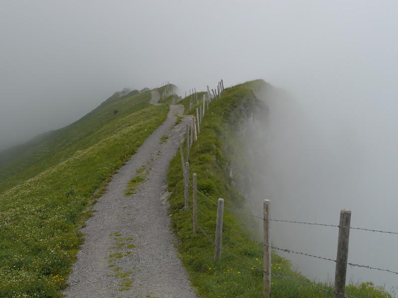 @RobAng 2013 / Bergspaziergang Hochybrig, Muotathal, Illgau, Kanton Schwyz, CHE, Schweiz, 1743 m ü/M, 2013/07/07 14:29:14