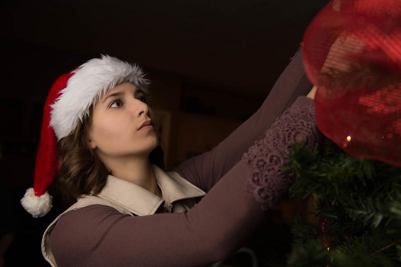 Christmas 2015-119-Edit-15.jpg