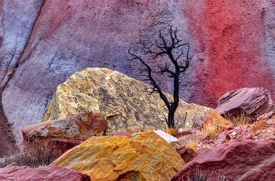 Colorful Utah.Fall 2018.
