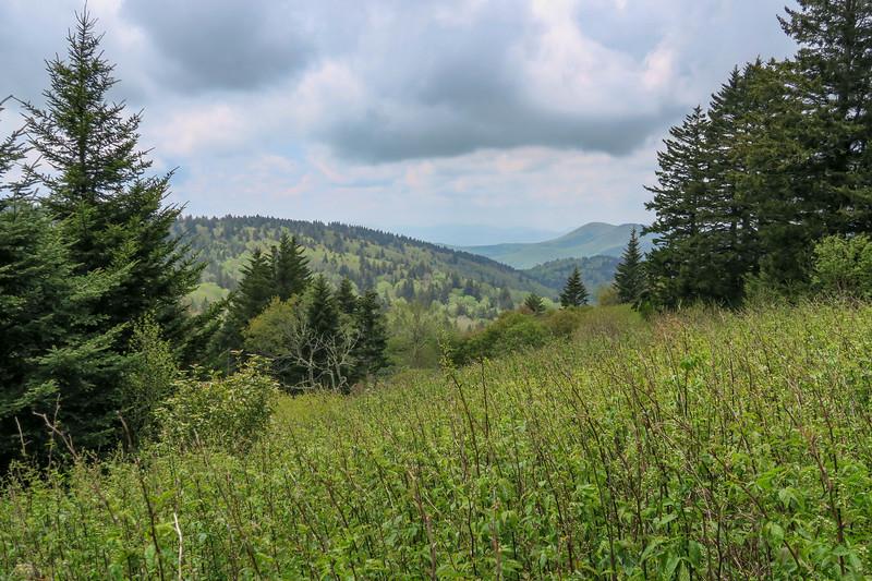 Fork Ridge Meadows Spur Path -- 5,830'