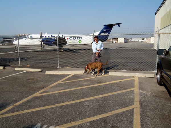 Pet Airways