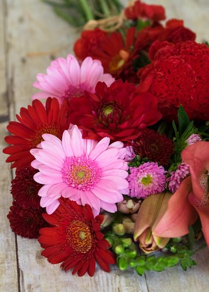 Bloom2Bloom November 2015-21.jpg