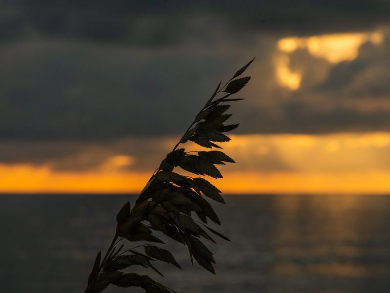 20180913_lkw_lake_worth_pier_morning_sunrise_jrf_37.JPG