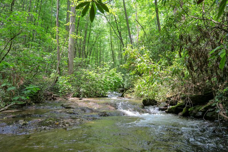 Fletcher Creek -- 2,520'