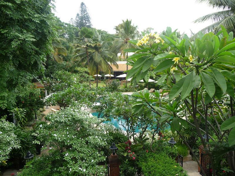 View from the front balcony outside my room, They use Frangipani, bougainvillea, and purple lantana here.