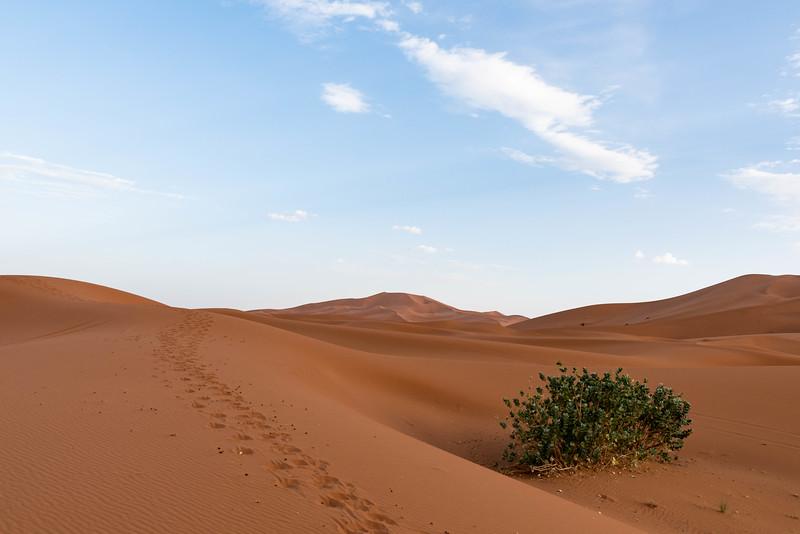 Marruecos-_MM11241.jpg