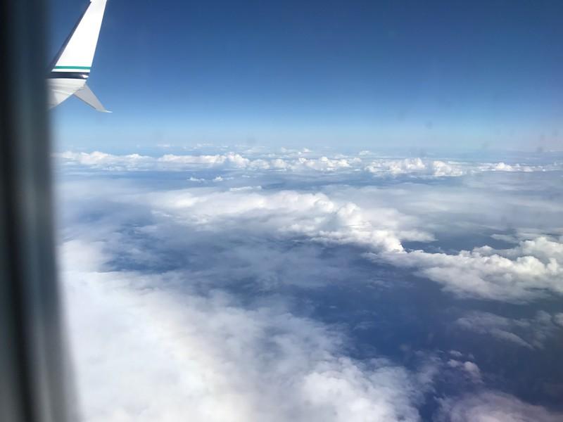 SFO -> Maui