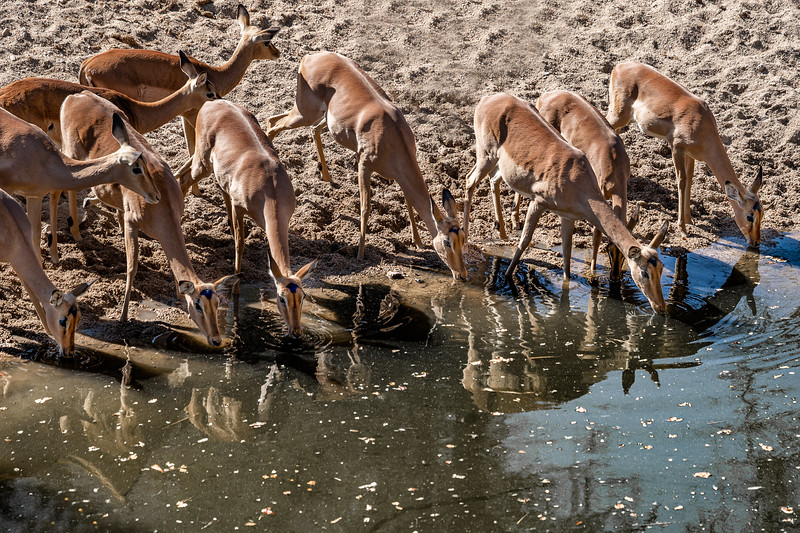 377 Kruger_untitled-4996-2.jpg