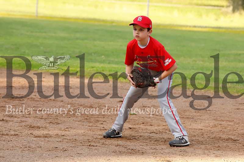 Aaron Ludoff takes a ready stance at first base in the Saxonburg 7-8 year-old little league championship game between the Cardinals and the Cubs. The Cardinals won the game 13-4. Seb Foltz/Butler Eagle