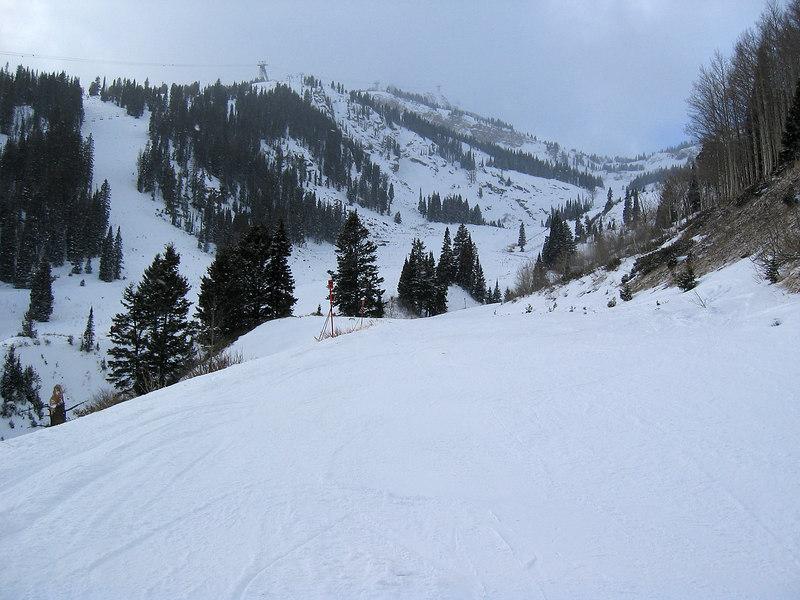 Jackson Hole mountain resort, mid-mountain   (Dec 11, 2006, 03:11pm)