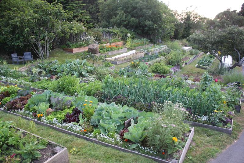 Gardens at the Stanford Inn, Mendocino