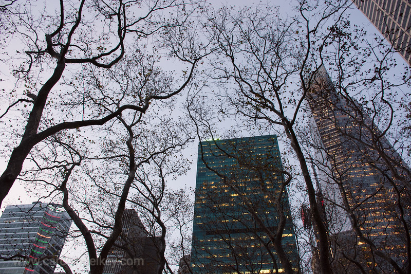 NYC and December