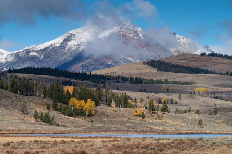 Snow-capped peaks loom over Swan Lake Flats [September; Yellowstone National Park, Wyoming]
