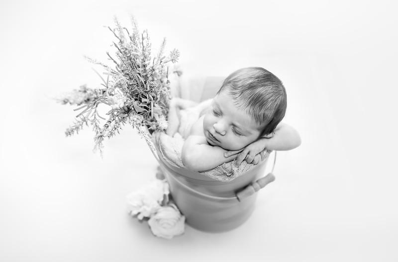 bw--newport_babies_photography_hoboken_at_home_newborn_shoot-4851-1.jpg