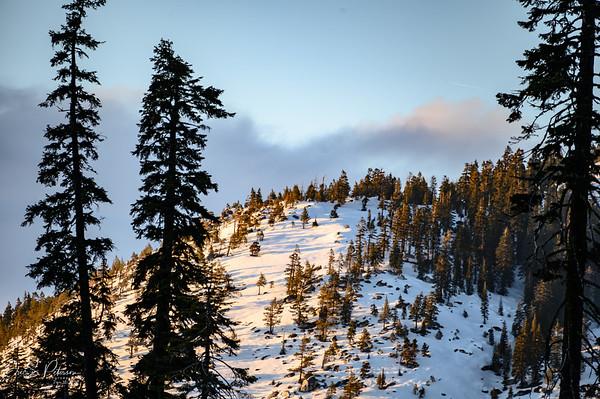 Sierra at Tahoe '20