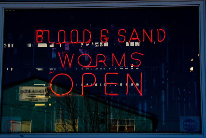 RoadTrip-314 : Blood and Sand worms, sounds like Laurel Hamilton Novel title.