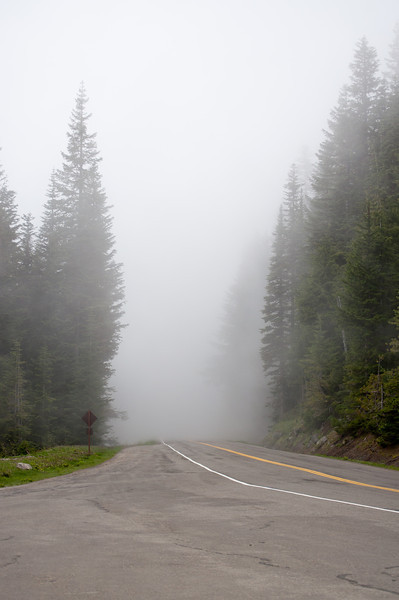 Road into the fog.