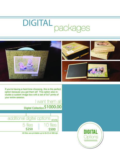 13.8 digital packages.jpg