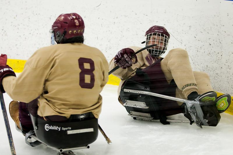 hockey_sled_011014_17.jpg