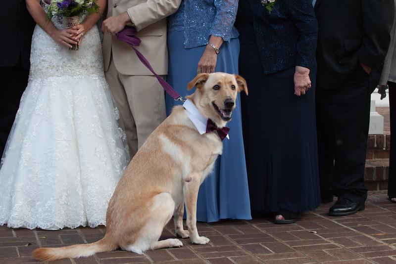 wedding-518 (2).jpg