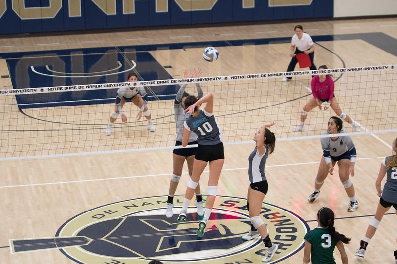 HPU Volleyball-93116.jpg