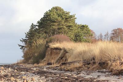 20120225 Denmark, Tontoft Nakke